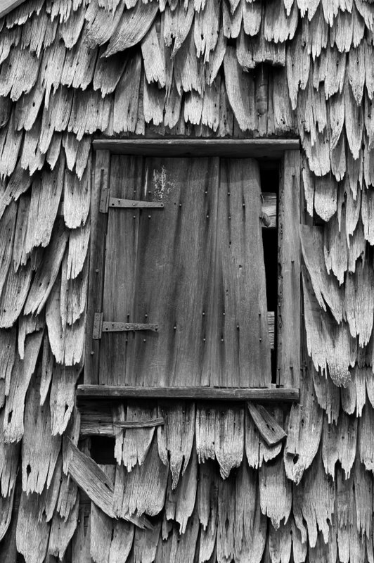 IMG_0881.JPG - Shingles 2  The wooden shingling on this Sotterley Plantation barn had amazing texture...