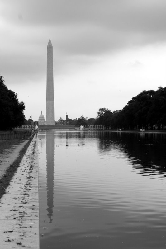 IMG_0958.JPG - Washington Monument 4